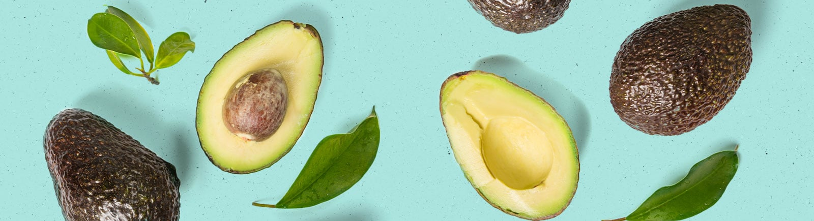 header image of avocados cut in half, some with pit some without a pit