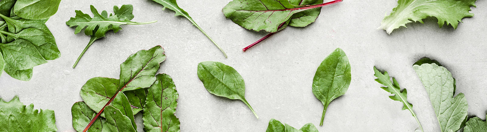 header image of leafy greens including spinach and lettuce