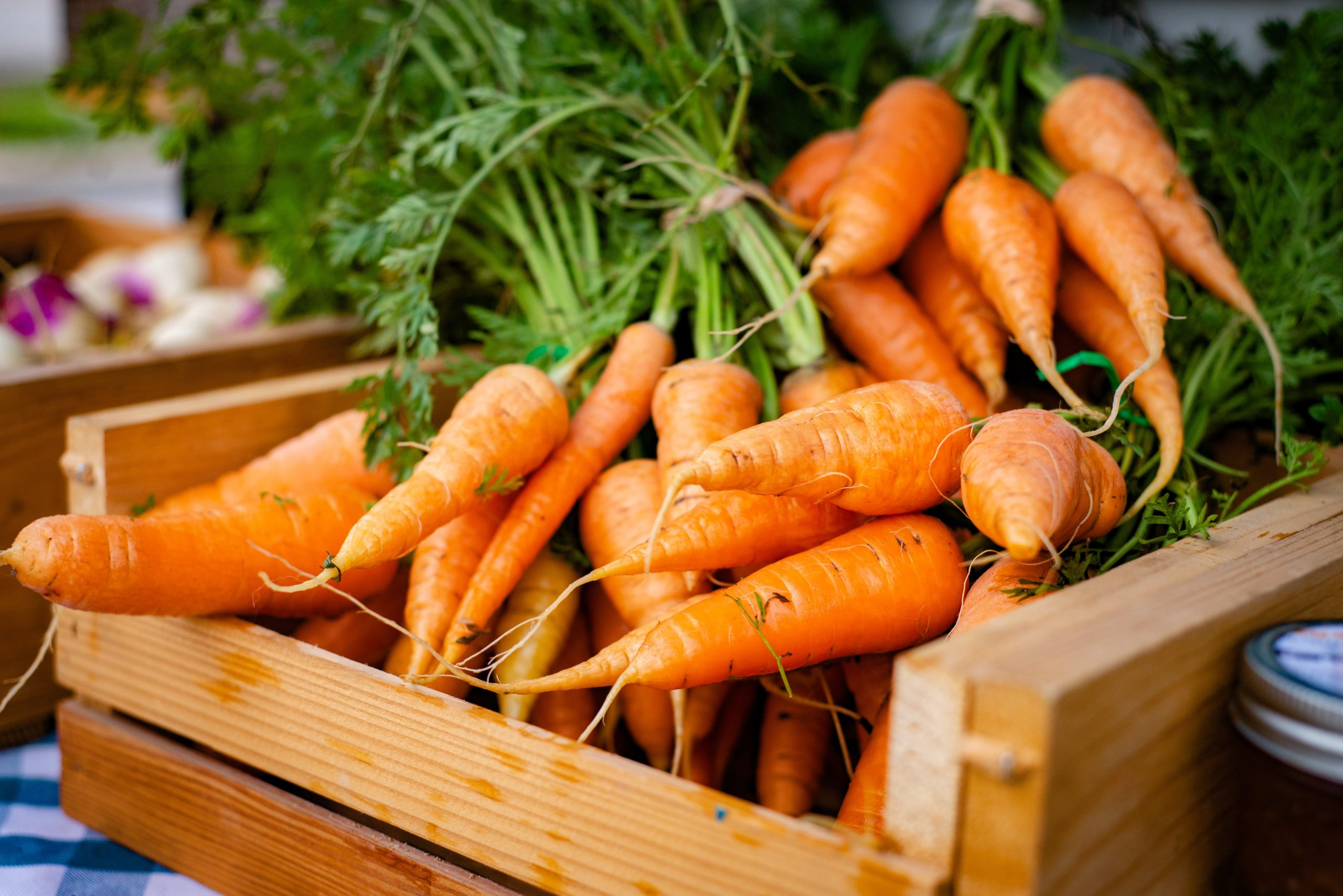 Close up of bunched carrots